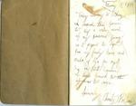 Charity Lamb's Diary