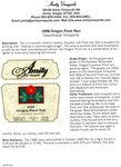 Amity Vineyards 1998 Oregon Pinot Noir Information Sheet