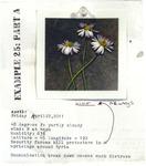 Example 25: Part A by Liz Obert