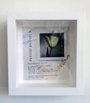 Latitude=45 Longitude=122 Installation 09 by Liz Obert