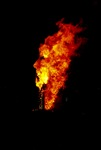 Synergy Collaborative Burn Sculpture 17
