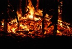 Synergy Collaborative Burn Sculpture 24