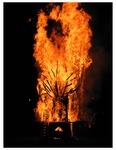 Roots Collaborative Burn Sculpture 17
