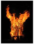 Roots Collaborative Burn Sculpture 18
