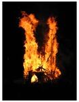 Roots Collaborative Burn Sculpture 19