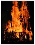 Roots Collaborative Burn Sculpture 20