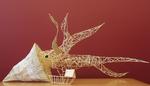 The Squid by Celeste Knopf, Emma Sandaine, Lukas Kleinman, and Micah Roos