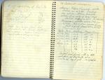 Erath Notebook 17: '66 Cabernet Sauvignon