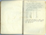 Erath Notebook 18: '66 Palomino