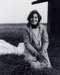 Diana Lett Transplanting Vines