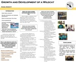 Growth and Development of a Wildcat by Daniel Endicott