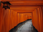 Fushimi Inari Shrine by Leah Sedy