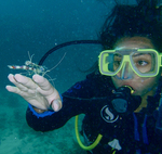 Who You Callin' Shrimp?!