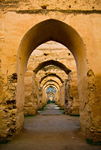 Arches by Joey Paysinger
