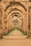 Moulay Ismail's Royal Stables by Emmaline Irvine