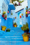 Famous Blue Streets by Emmaline Irvine