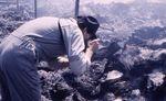 Arson Case by Lyle Hubbard