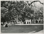 Picnic under the Old Oak by Unknown