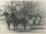 Horse-Drawn Surrey by Unknown