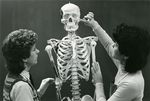 Anatomy Class by Unknown