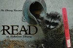 The Library Raccoon READ Poster by Paula Terry and Nicholson Library Staff