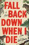 Fall Back Down When I Die: A Novel by Joe Wilkins