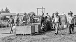 Bethel Heights Vineyard Crew during Harvest by Unknown