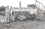 The Bethel Heights Vineyard Sign by Unknown