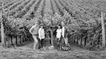 Bethel Heights Vineyard Owners at the Vineyard 01 by Unknown