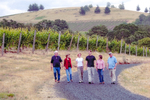 The New Bethel Heights Vineyard Team by Unknown