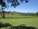 Bradley Vineyards Property 02 by Linfield College Archives