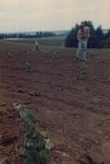 Elton Vineyards Planting 14 by Unknown
