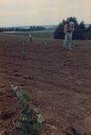 Elton Vineyards Planting 14