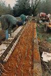 Elton Vineyards Planting Nursery Cuttings 01