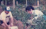 Elton Vineyards during Harvest 05