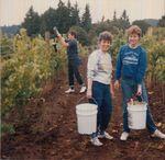 Elton Vineyards Harvest Party 03