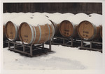 Snow-Covered Wine Barrels, 1983