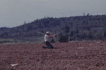 Planting First Vineyard 04