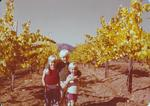Three Girardet Children in the Vineyard