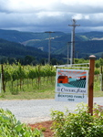 Mt. Hood Winery Tour 03