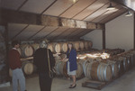 Maria Ponzi among Wine Barrels by Unknown
