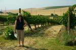 Tero Estates Winery 01 by Tobias Inman
