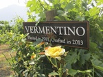 Vineyard Sign by Linfield College Archives
