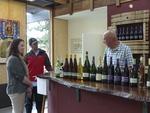 Viento Wines Tour 03
