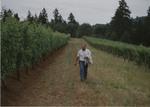 Andy Humphrey Walking through Vineyards