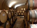 Alloro Vineyard Wine Cellar 01 by Linfield College Archives
