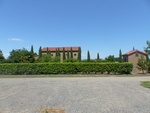 Alloro Vineyard View 03 by Linfield College Archives